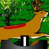 Supreme Deer Hunting