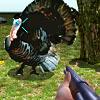 Turkey Shooter 3D